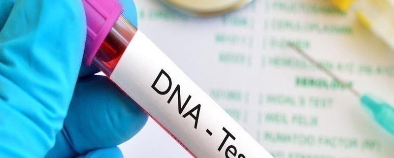 Xét nghiệm ADN Bình Dương